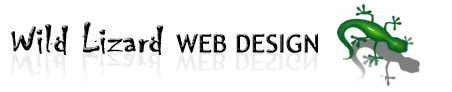 Wild Lizard Web Design